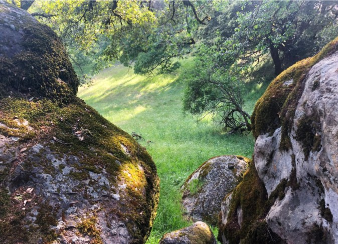 castle rock hiking trail