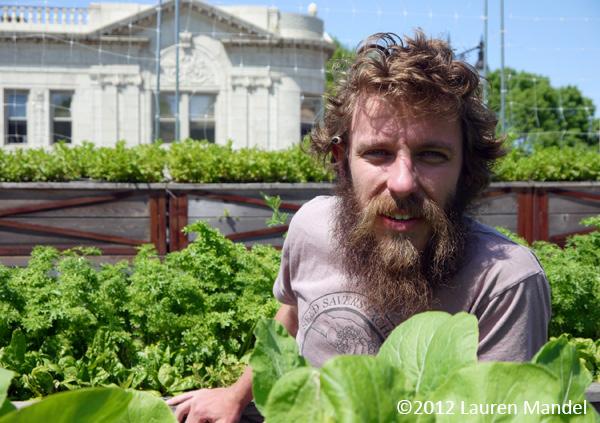 """""""Rooftop Revolutionary"""" - Uncommon Ground, IL    (c)2012 Lauren Mandel"""