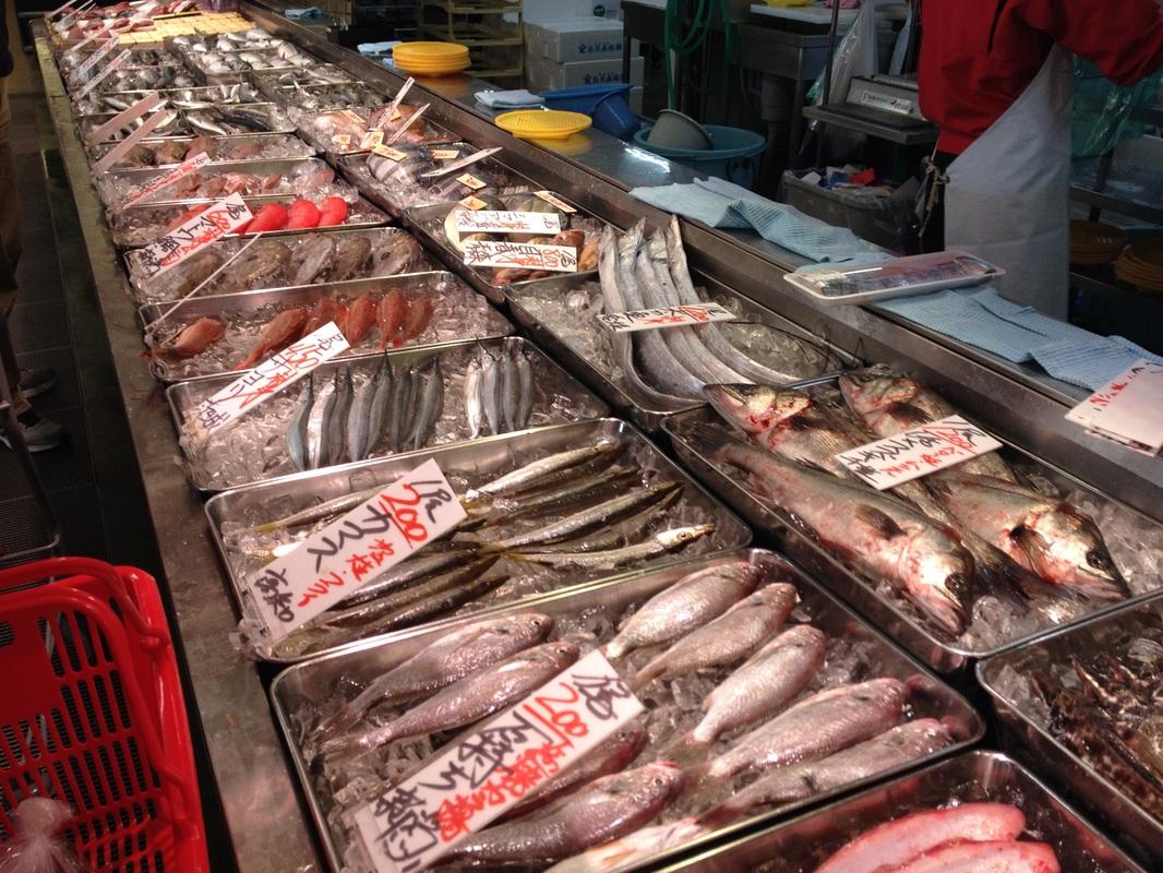 上 魚類 角