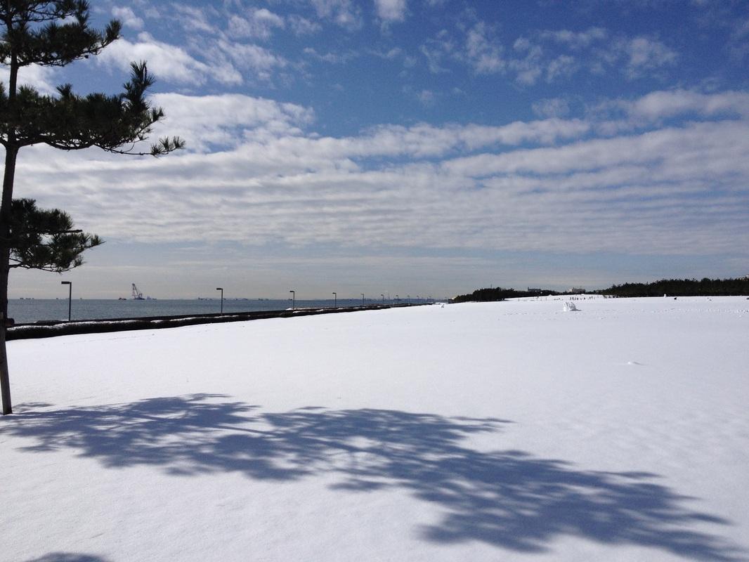 Urayasu Park(浦安総合公園)