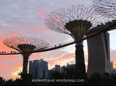 Gardens by the Bay, Chinatown, quelques jours à Singapour