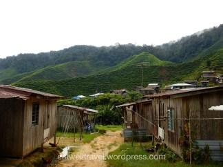 Village Orang Asli, Cameron Highlands
