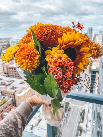 October 2019: Photoblog