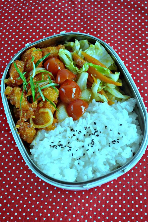 Sweet & Sour Fish Lunchbox_1