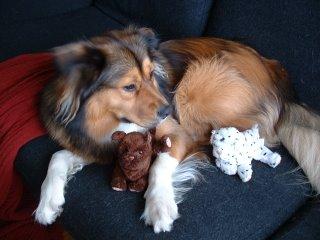 """Happy Birthday """"P"""" Pup!!"""