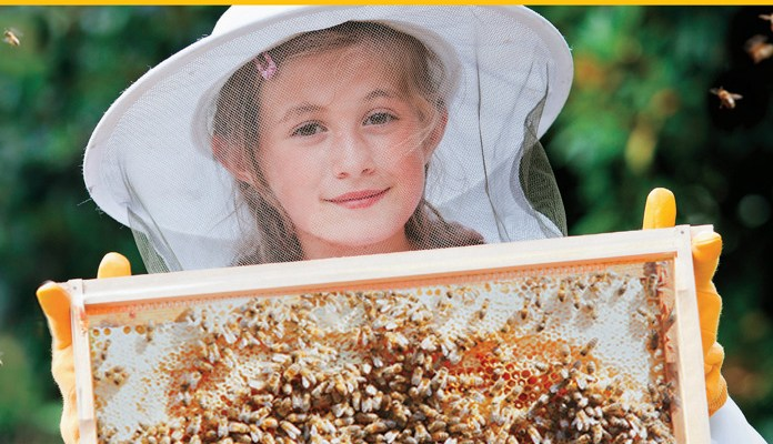 The Beginner's Guide To Beekeeping: Review