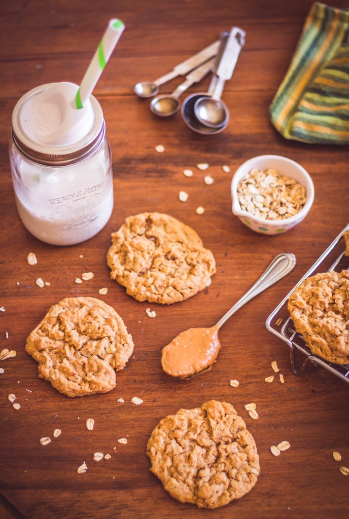 Peanut Butter Oatmeal Cookies (Egg-Free/Dairy-Free/Vegan)