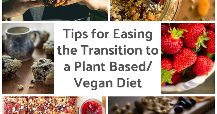 11 Tips for Easing the Transition to a Plant-Based Diet