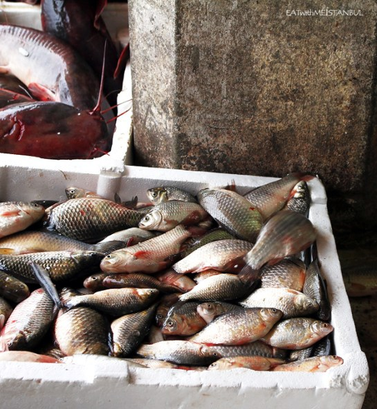 fish-market-1