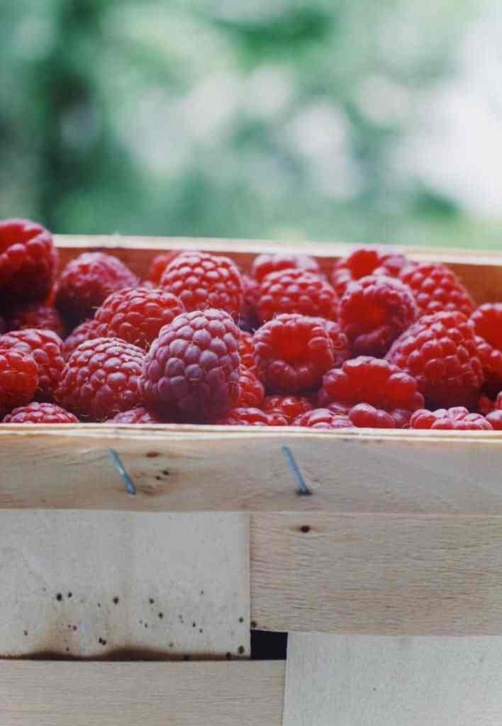 Health and beauty benefits of raspberries. Raspberries. Raspberry. Raspberry health. Raspberry beauty.