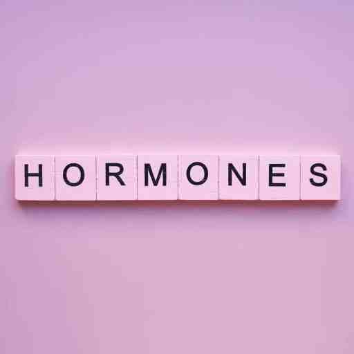 Scrabble tiles spelling out hormones. Hormone foods balancing hormones naturally.