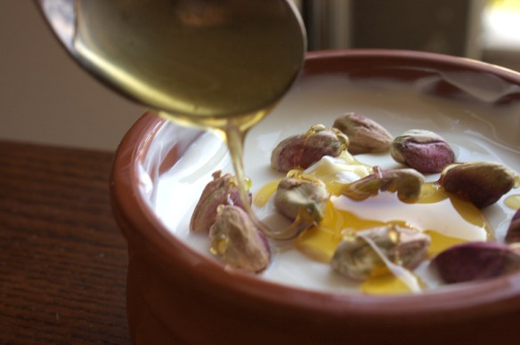 pistachios_honey_greekyogurt1