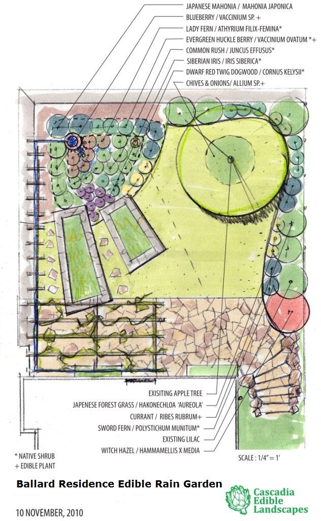 Consultation Amp Design Cascadia Edible Landscapes