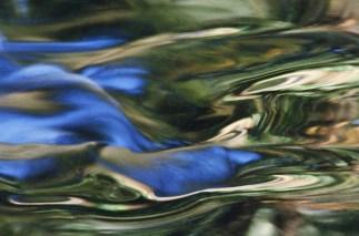 eau reflets