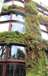 mur-vegetal-quai-branly