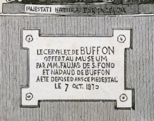 buffon-statue-gravure-detail-plaque