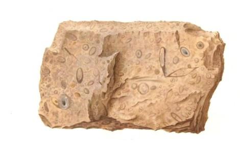 calcaire-pour-la-construction-fde-la-pyramide-choquet