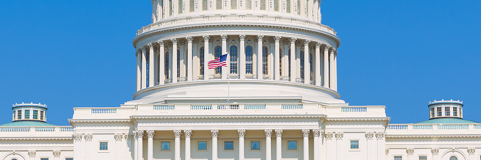 The EB - 5 Reform and Integrity Act of 2020- A Potential EB - 5 Reform