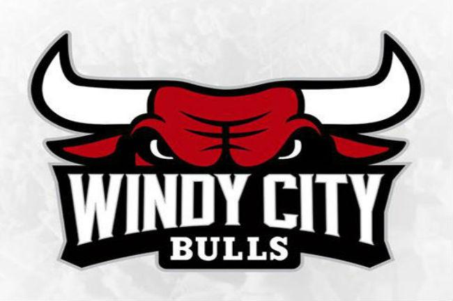 chicago-bulls-d-league-team-badge1