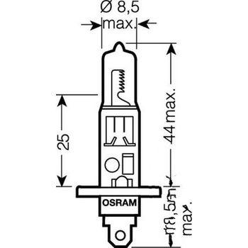 Glühbirne Birne Lampe H1 12V55W bulb 12v55w Kawasaki
