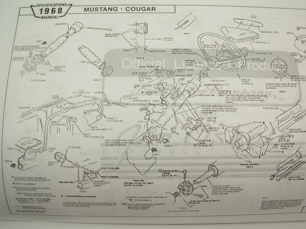 hight resolution of diagram of cougar