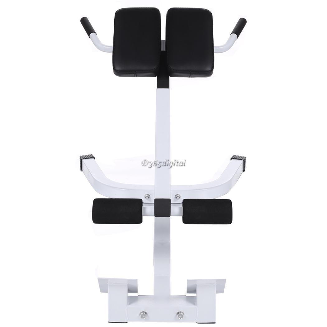 chair gym accessories dinosaur desk japan bench roman back extension trainer fitness
