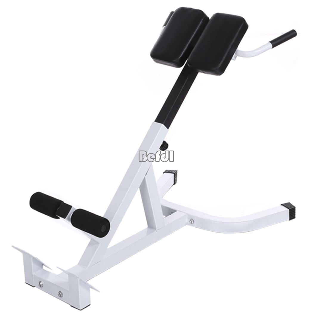 roman chair gym equipment recaro office hong kong back extension trainer bench fitness