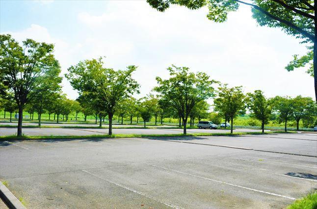彩湖道満グリンパークBBQ場 駐車場