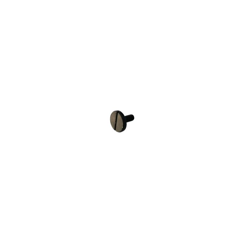Eberspacher Hydronic screw M4x10mm