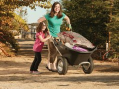 best wheelbarrows