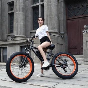 e-Bicycles