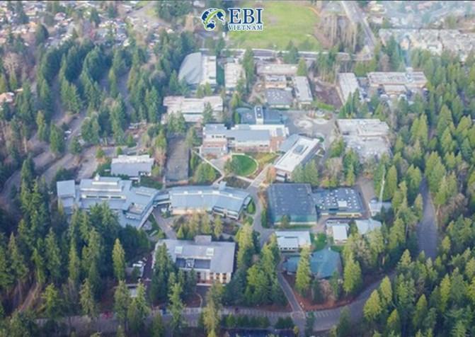 Khuôn viên cao đẳng Green River