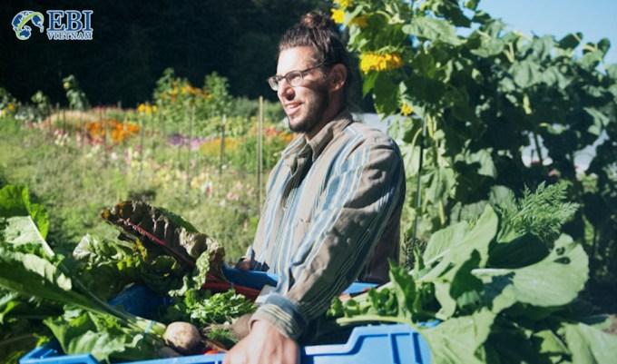Nông trại organic tại cao đẳng Evergreen