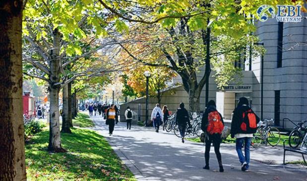 Sinh viên du học Canada