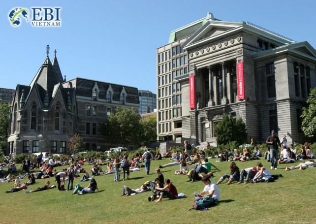 Du học Canada ngành quản trị kinh doanh tại McGill