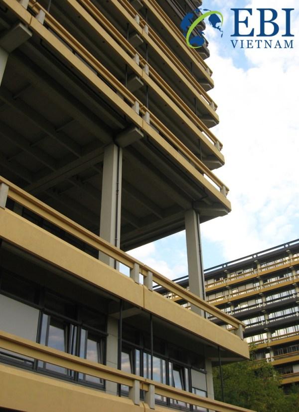 Trường Đại học Bochum