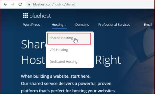 get a free domain bluehost