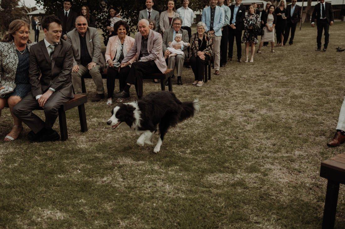 Pip + Mitch | Ebony Blush Photography | Perth Wedding Photographer | Perth Wedding Photos | Street Food Wedding | Fremantle Wedding Photos33