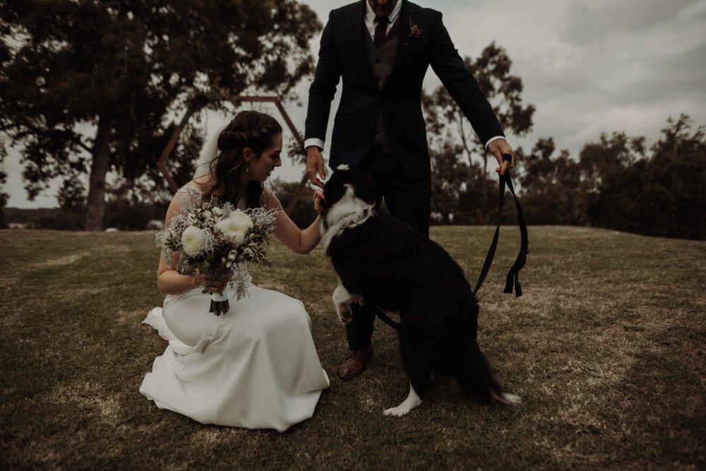 Pip + Mitch | Ebony Blush Photography | Perth Wedding Photographer | Perth Wedding Photos | Street Food Wedding | Fremantle Wedding Photos44