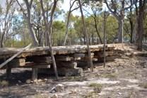 bush bridge 10
