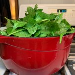 Four pounds of spinach