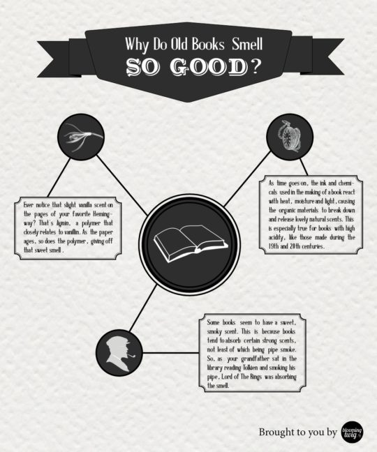 Book smell explained: 7 infographics, charts, and videos