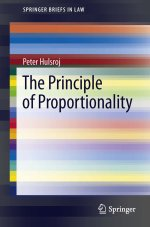 The Principle of Proportionality (SpringerBriefs in Law)