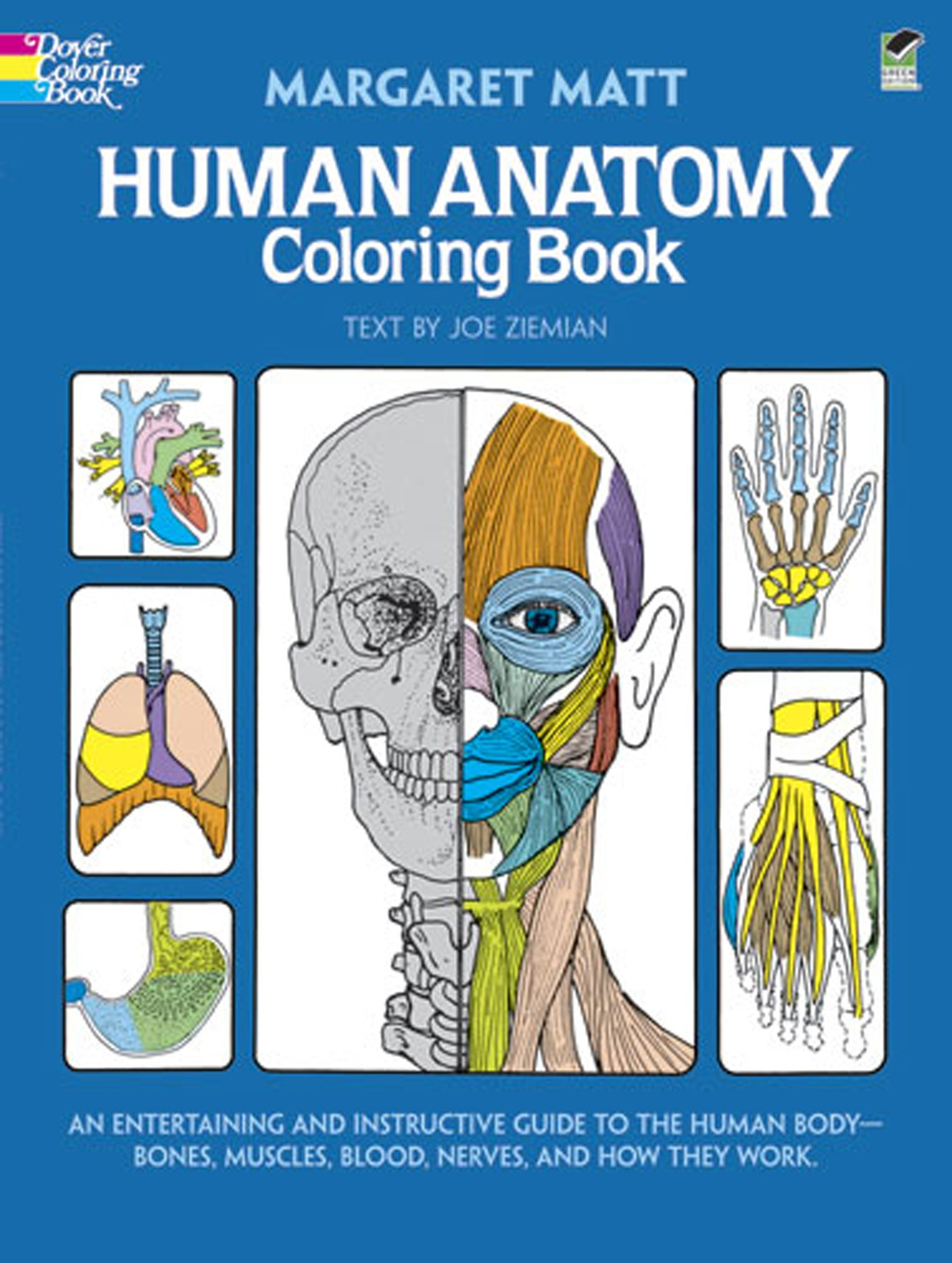Download Human Anatomy Coloring Book An Entertaining
