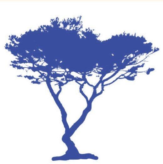 #IndependentBookstoreDay 2019 Celebrating Blue Cypress Books