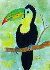 If I Can Toucan by Jennifer Love