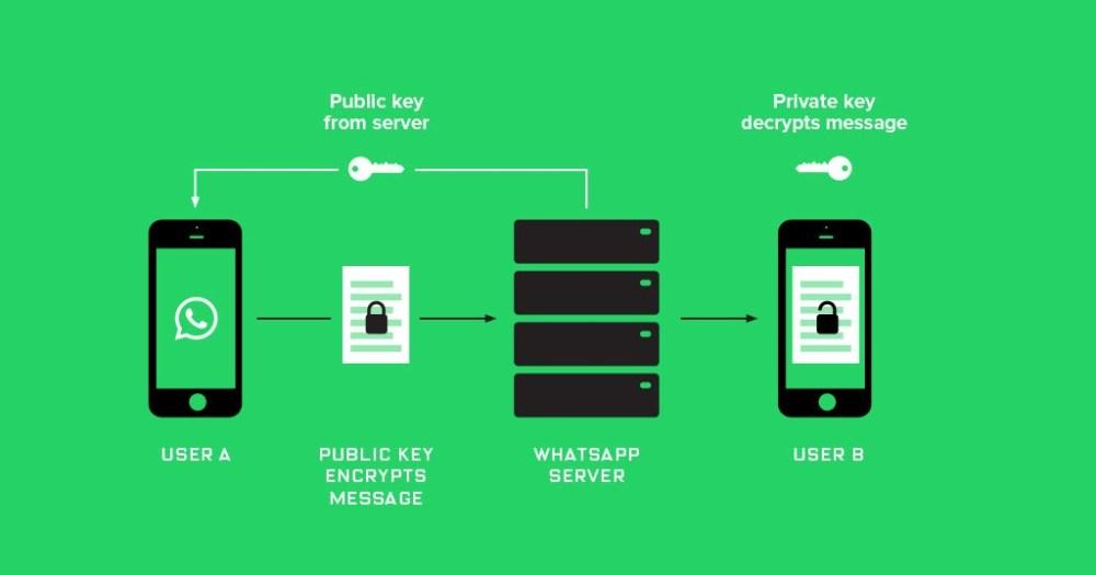 Applications Erase WhatsApp Messages After The Deadline ebuddynews