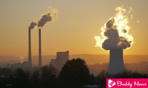 WHO Warns That 15% Of Deaths That Occur Are Due To Pollution - ebuddynews
