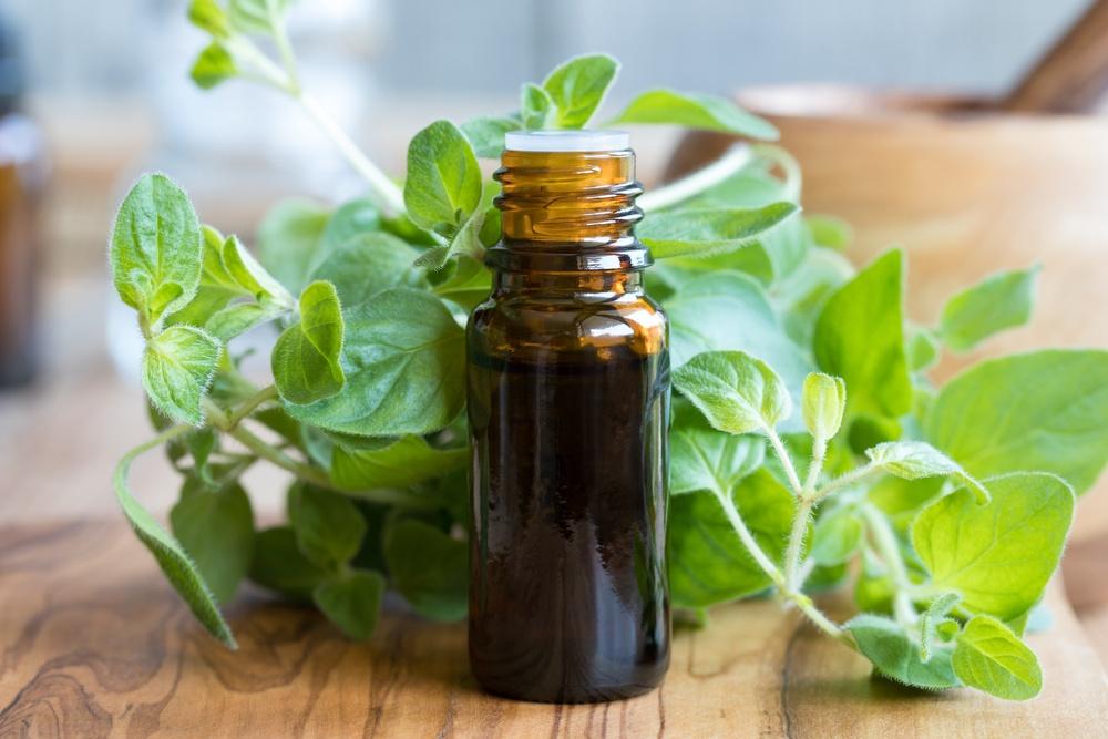 9 Best Natural Antibiotics For Daily Life - ebuddynews