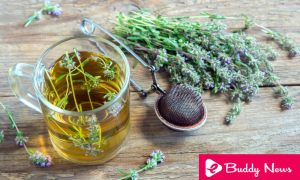 10 Amazing Health Benefits of Thyme - ebuddynews